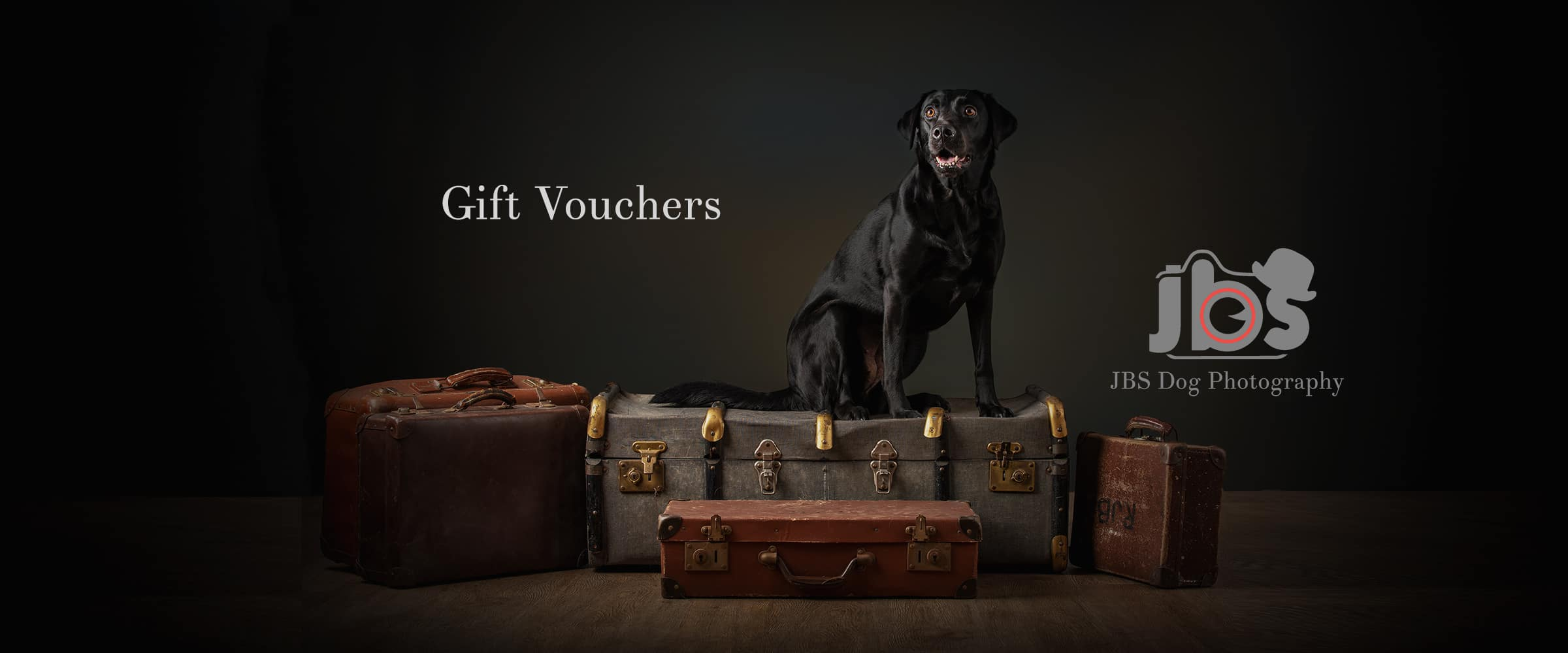 Classic Package | JBS Dog Photography